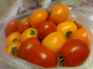 iPhone-fresnel lens image of fresh tomatoes