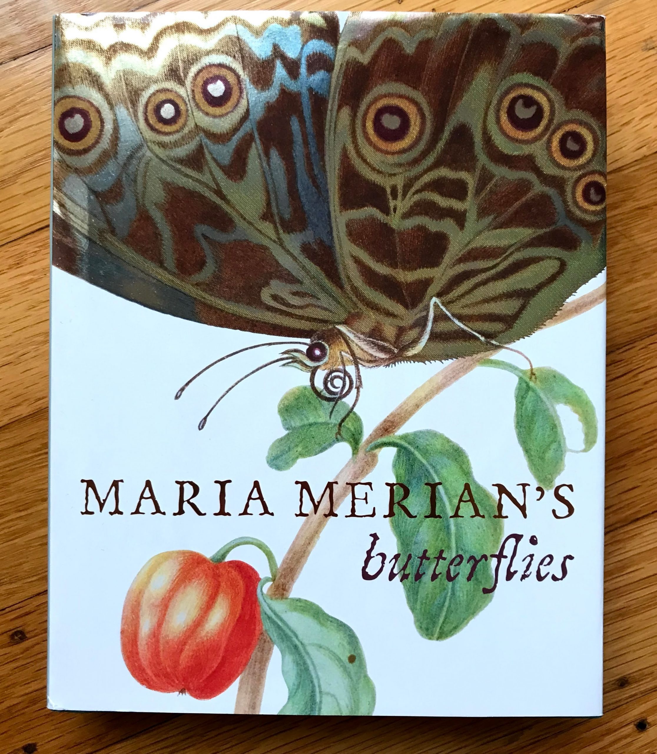 Cover of Maria Merian's Butterflies