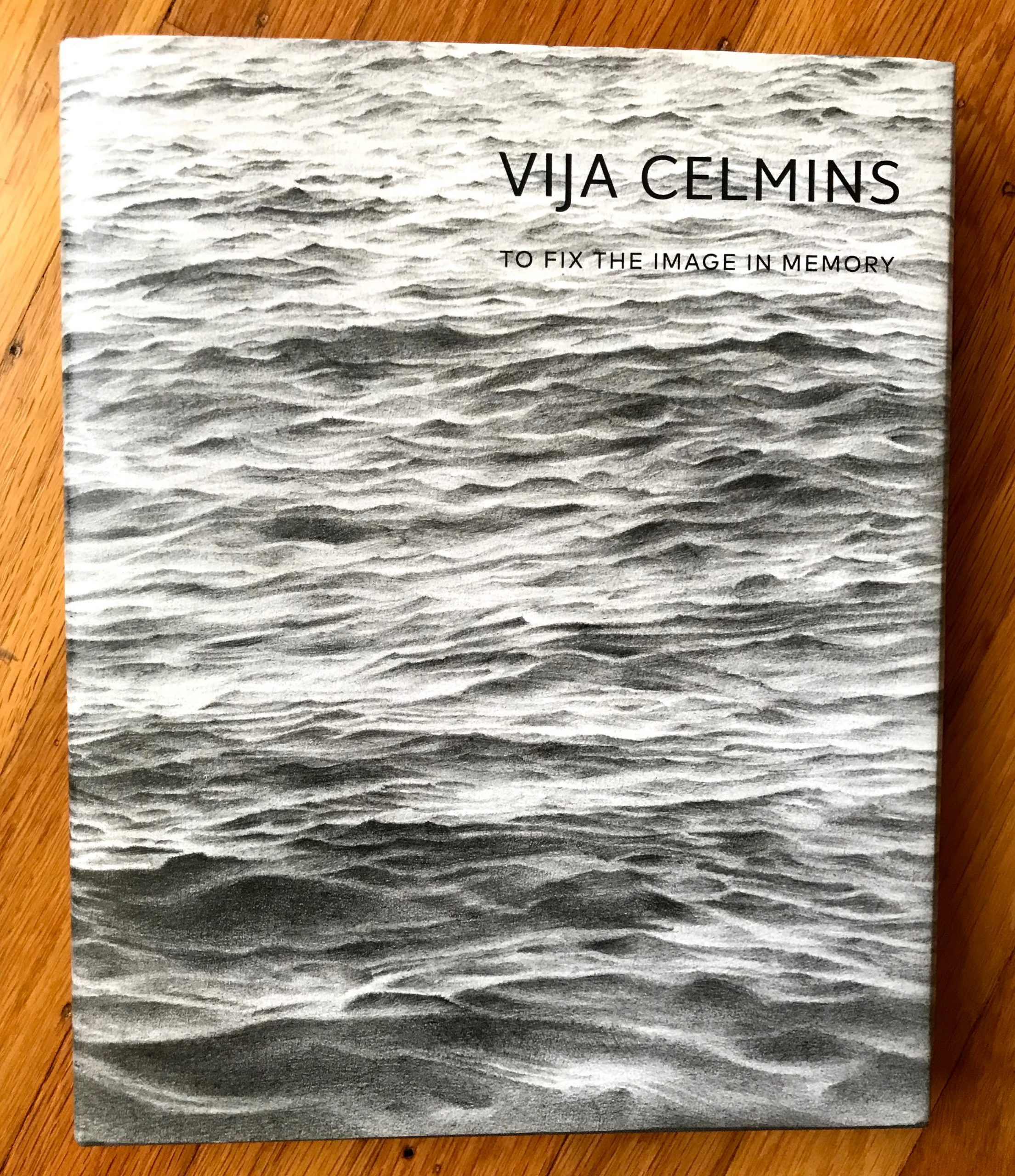 Cover of Vija Celmins: to Fix the Image in Memory