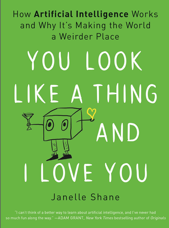 Cover of You Look Like a Think and I Love You by Janelle Shane