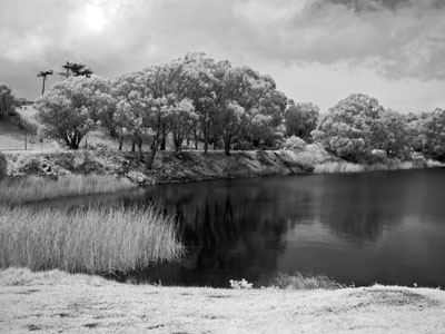 infrared photograph, Lake Merced, San Francisco