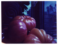 polaroid pinhole image of heirloom tomatoes