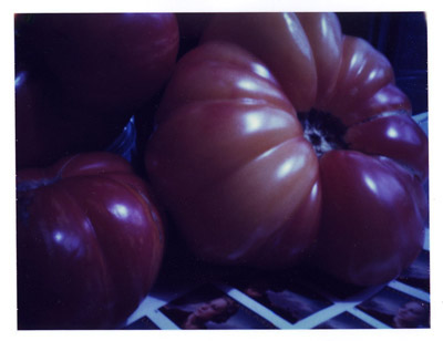 polaroid pinhole image of heirloom tomatoes with stamps