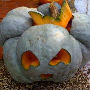 third face of jack o lantern carved into strangely lobed winter squash