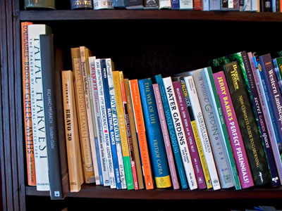 photographs of my books on a shelf