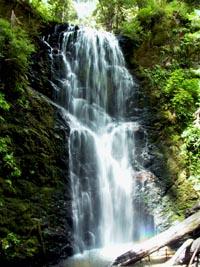 Berry Falls waterfall, Big Basin State Park